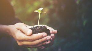 Il nuovo paradigma delle green society nasce dai territori
